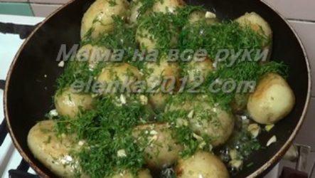 Как приготовить молодую картошку